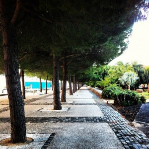 Early Mornings #lisboa #lindo #expo #green #nature #peaceful #quiet #morning…